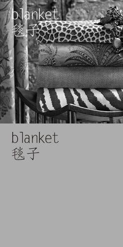 毯子 / blanket